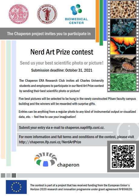 Nerd Art Prize leaflet